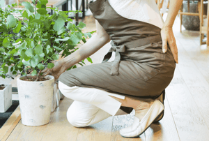 植木鉢を持った時に腰痛になった女性