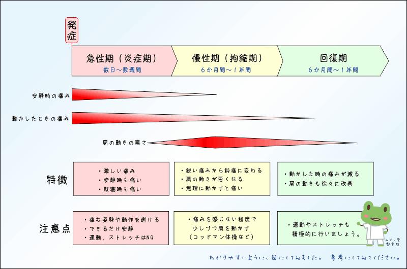 四十肩、五十肩、症状変化の説明図