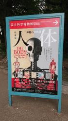 人体展の看板