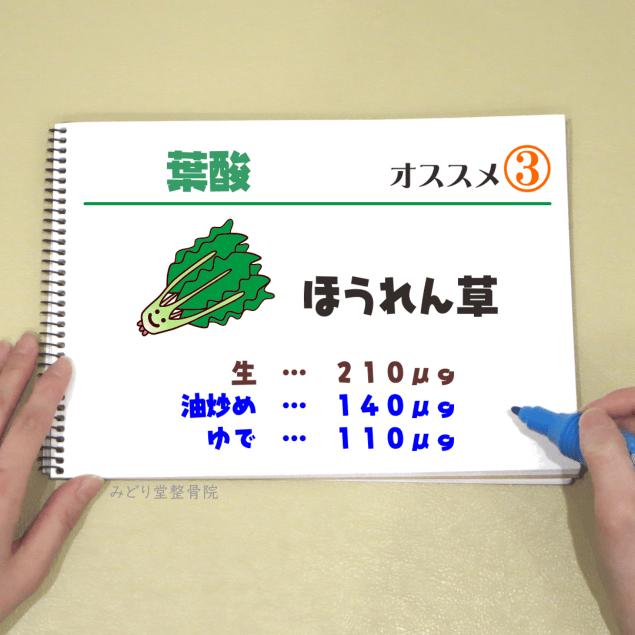 ビタミンB9【葉酸】_オススメ3(ほうれん草)