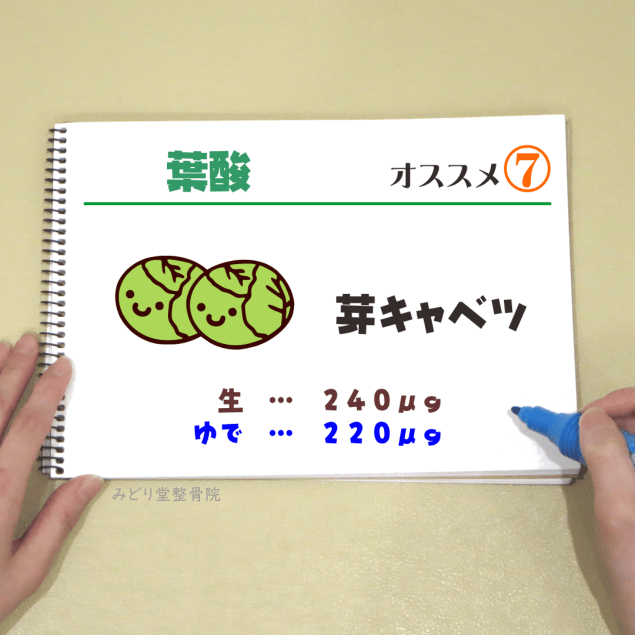 ビタミンB9【葉酸】_オススメ7(めきゃべつ)
