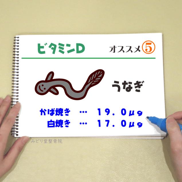 ビタミンD_オススメ5(うなぎ)