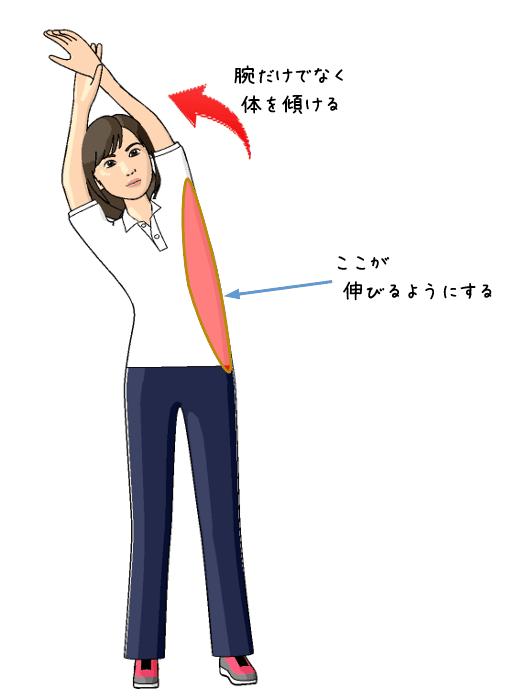 脇腹のストレッチをする女性のイラスト
