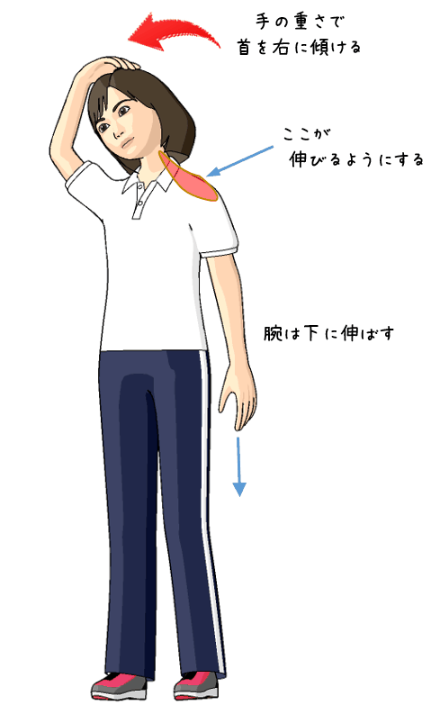 首から肩のストレッチをする女性のイラスト