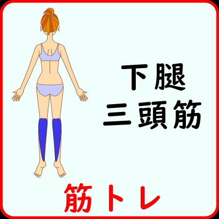 下腿三頭筋の筋トレ