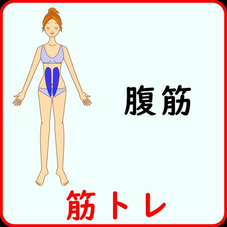 腹筋の筋トレ