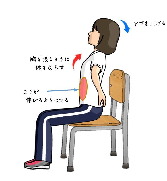 お腹の筋肉のストレッチをする女性のイラスト