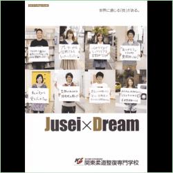 2012年度の関東柔道整復専門学校の案内書
