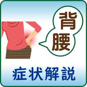 背部、腰部の症状解説