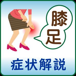 ひざ、足の症状解説